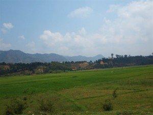 extrait de notre récit MADAGASCAR 23 octobre au 15 novembre 2011 dans Madagascar 2011 riziere-300x225