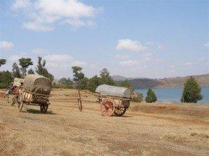 madagascar-292-300x225 forêt minérale